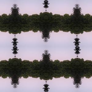 2_Hide park_40x54cm Kopie